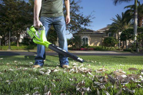 Greenworks 24227 Digi-Pro Blower & Vacuum