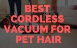 Best Cordless Vacuum for Pet Hair